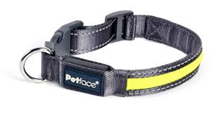 Flashing Yellow Reflective Collar